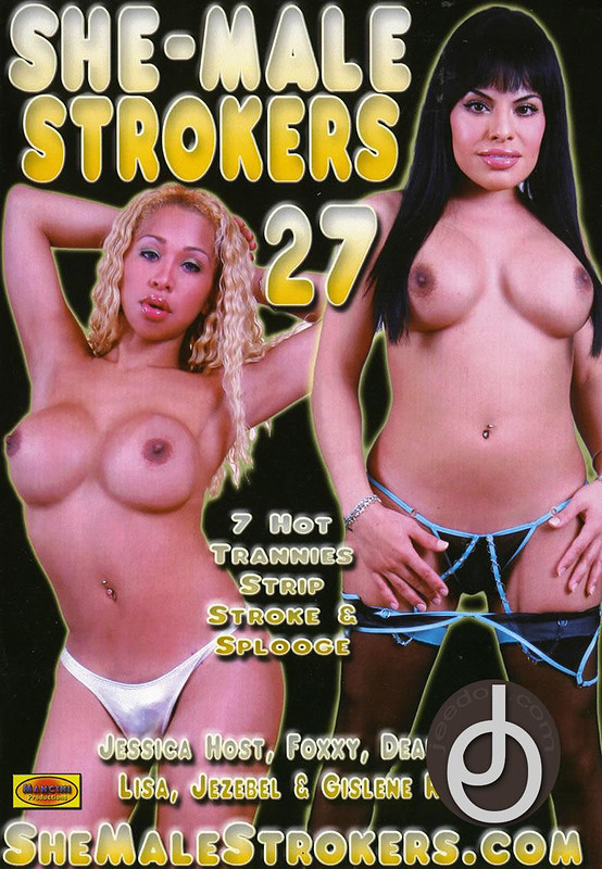 lingerie shemale bedtime stories 2008 american № 73974