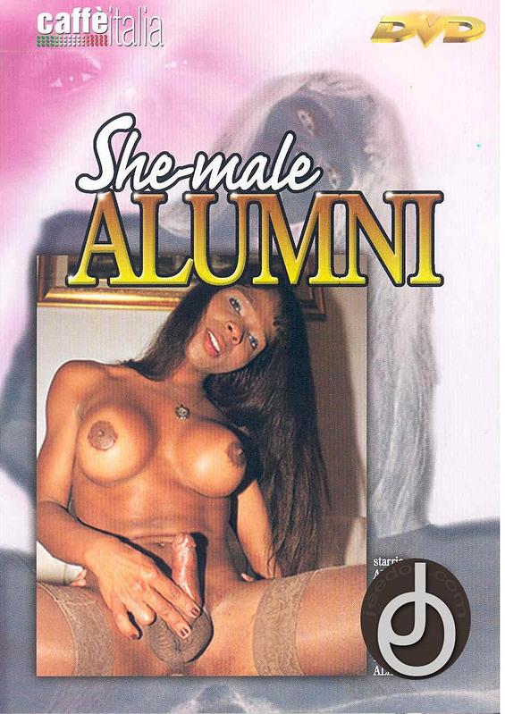 italian shemale 29 dvd № 70886