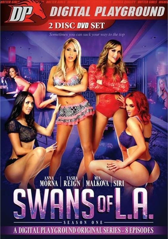 Download dvd free movie porn